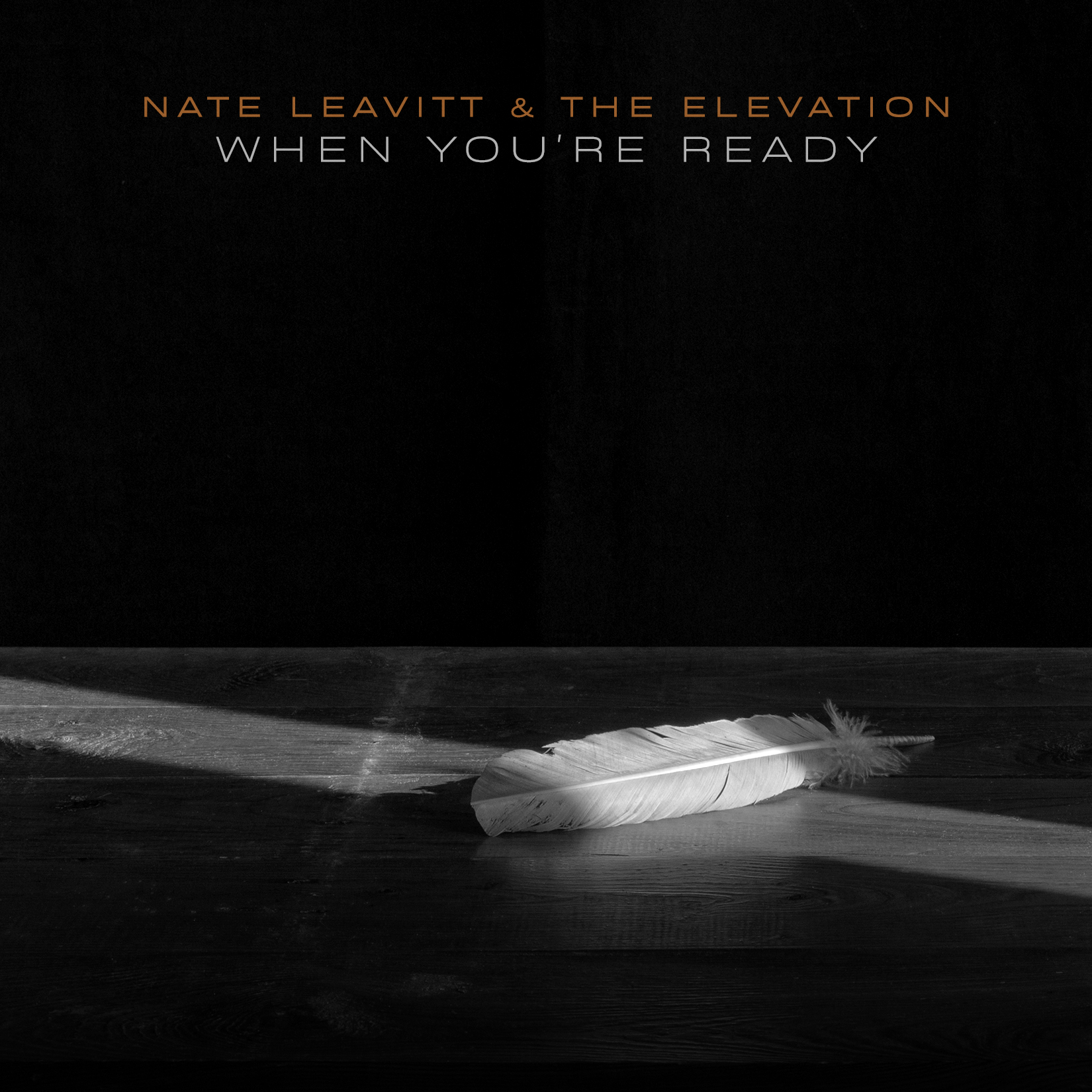 Nate Leavitt & The Elevation